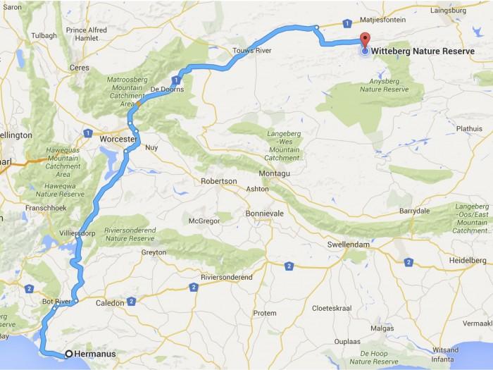 Hermanus to Witteberg Nature Reserve