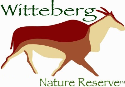 Witteberg logo